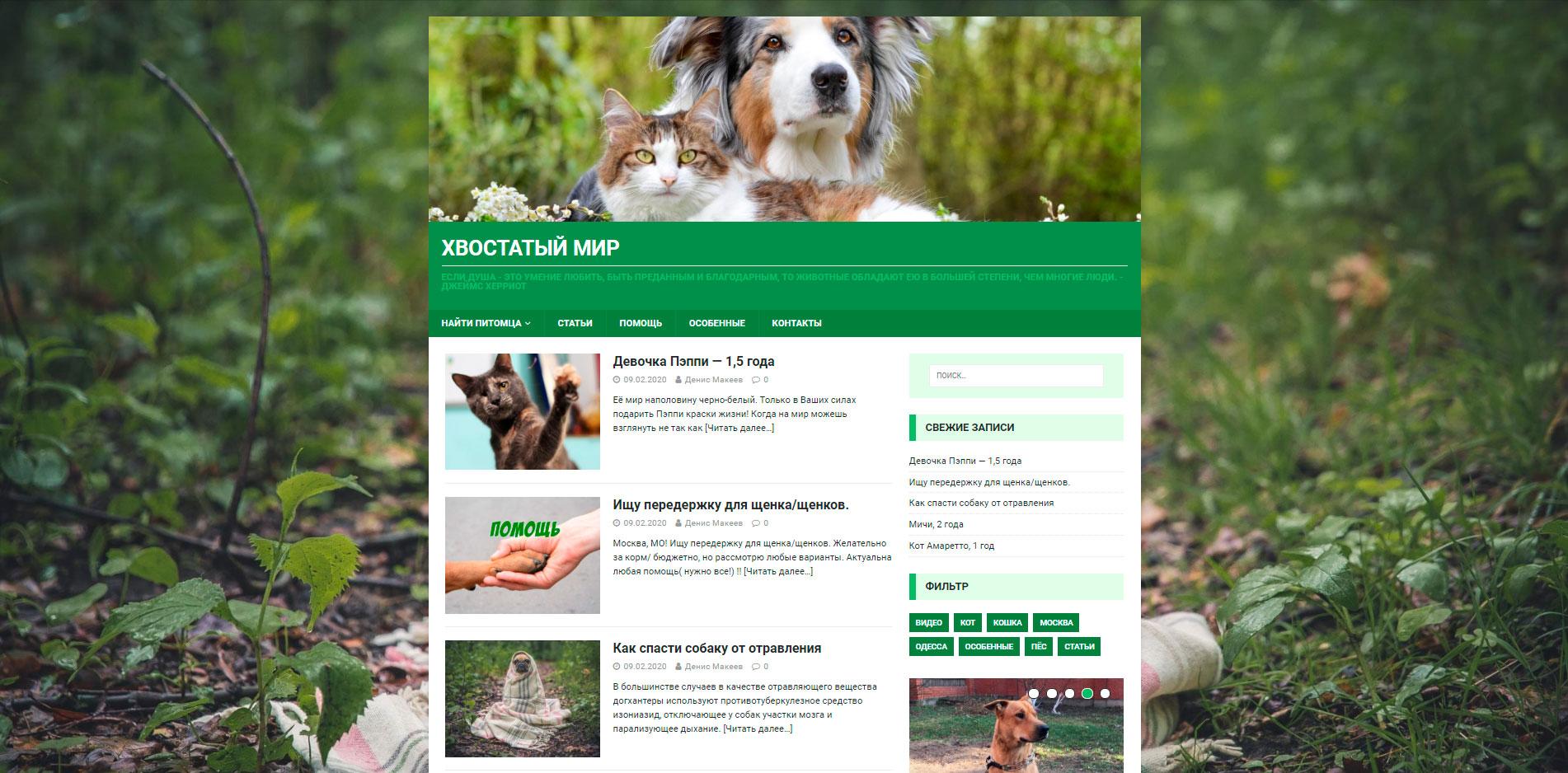 Кейс: Блог о домашних животных